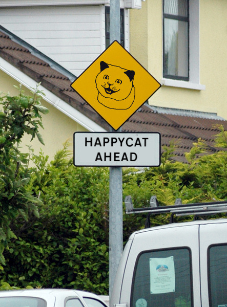 happycatahead1cr